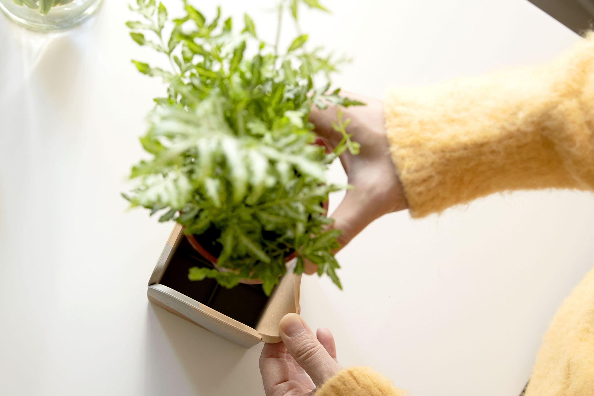 原來只要一點點改變,生活可以擁有許多面貌|軟水泥城市花園 CELEMENT LAB