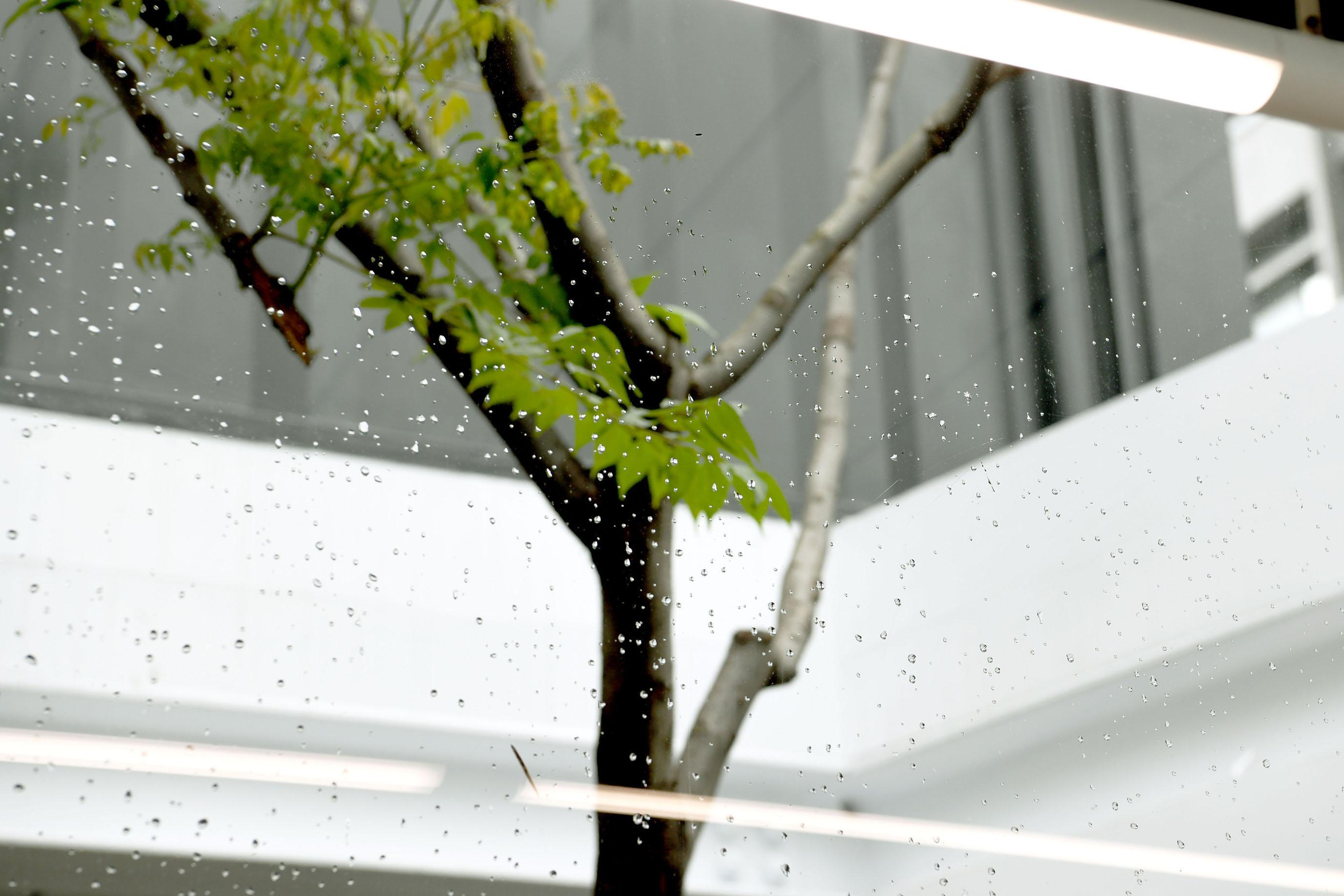台北咖啡場所,多雨裡感受天天香醇微風|Coffee Industry- Cafe Champ