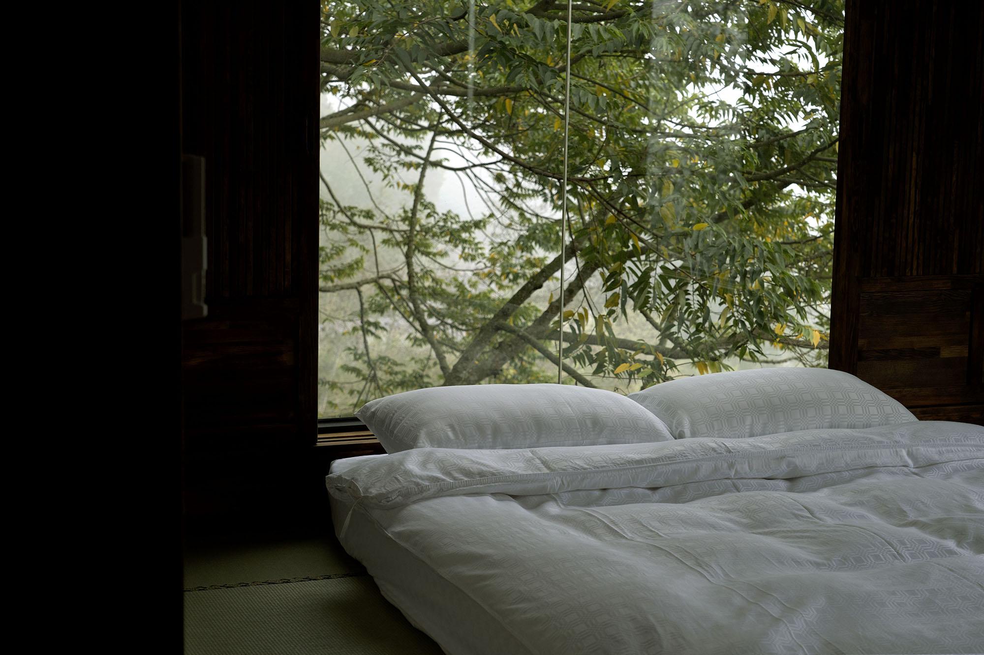 旅行的記憶今天想到阿里山走走|京岄山居民宿