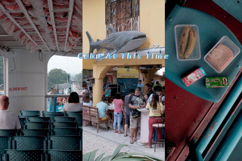 宿霧 Day5–歐斯陸不思議之旅,與鯨鯊共游。 @MENS 30S LIFE
